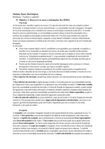 Tutorial: Anatomia dos Membros Superiores