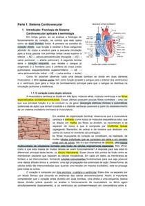Sistema Cardiovascular, Sistema Renal, Sistema Respiratório, Sistema Endócrino, Sistema Digestório, Receptores Sensoriais e Vias de Transmissão da Sensibilidade a partir da Medula Espinal, Contração m