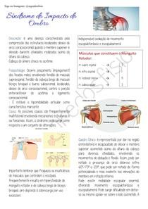 PDF Sindrome do impacto do ombro