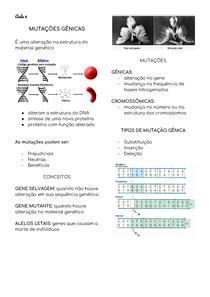 Mutações Gênicas - Veterinária