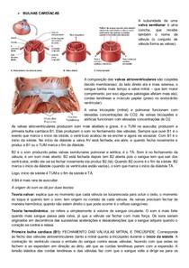 Bulhas Cardíacas e Ciclo Cardíaco