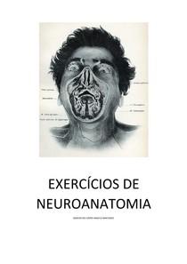 Exercicios de neuroanato