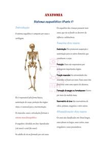 Sistema esquelético (Introdução: ossos)