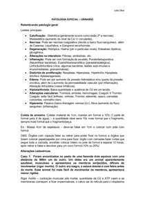 Resumo Sistema Urinario - Patologia Especial