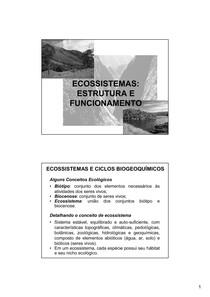 ecossistema estrutura e funcionamento