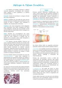 Histologia do sistema circulatório