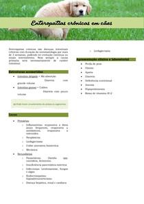 Enteropatias crônicas em cães