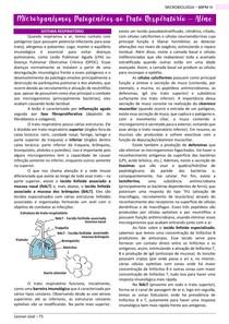 Microrganismos patogênicos ao trato respiratório - MICROBIOLOGIA