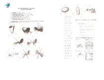 Lista_2_-_quadricas_e_curvas_de_nivel