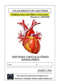 Apostila-Anatomia-Sistema-Circulatorio