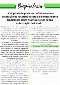 Resumo sobre Biopirataria