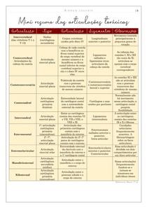 Articulações torácicas (esquema)