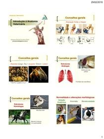 Anatomia Dos Animais Domesticos Konig Pdf
