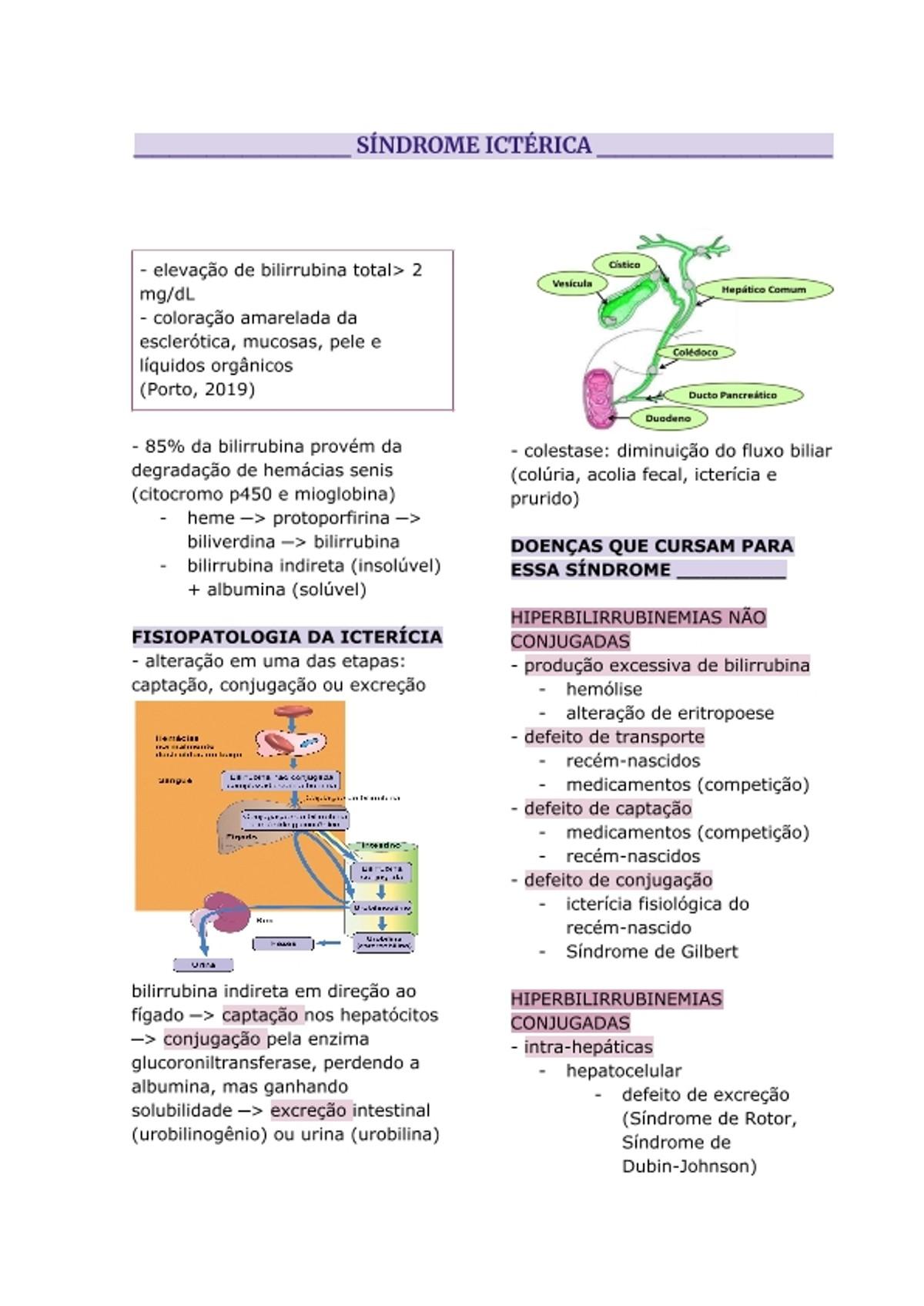 Pre-visualização do material SÍNDROME ICTÉRICA - página 1