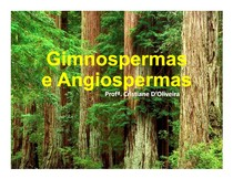 aula - gimnospermas e angiospermas 1