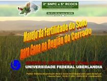 Manejo da Fertilidade do Solo para Cana na Região do Cerrado Uso Eficiente de Nutrientes e Adubação de Sistemas Agrícolas