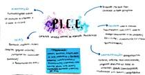 PICC (cateter venoso de inserção periférica)
