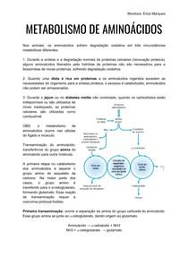 Metabolismo e síntese de aminoácidos
