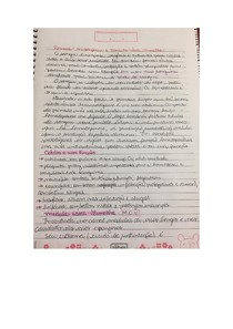 Hematopoese e MOV