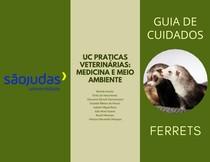 Guia de cuidados - Ferrets