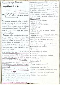 Resumo Entomologia  Aplicada (Prova 1)