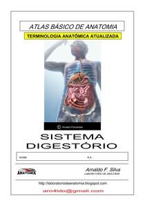 Anatomia Humana Digestorio Anatomia Humana I