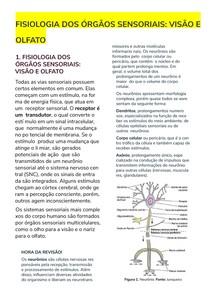 FISIOLOGIADOSORGAOSSENSORIAISVISAOEOLFATO-200908-193331-1600195523