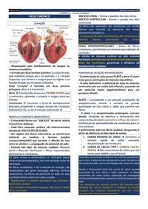 FISI01 - CICLO CARDÍACO