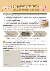 Esofagostomose em ruminantes e suínos