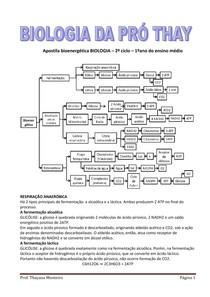 Apostila Bioenergética - Prof. Thayana Monteiro