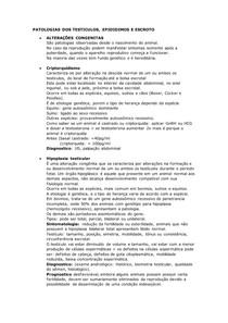 PATOLOGIAS DOS TESTICULOS