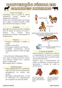 CONTENÇÃO FÍSICA EM GRANDES ANIMAIS (6)