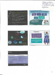 Slides sobre transtornos do sono