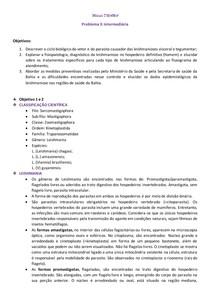 Módulo DRAMA problema 3 intermediária- estudo