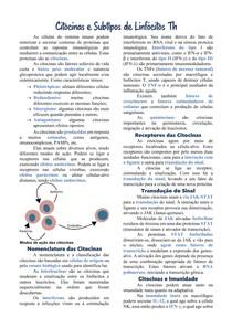 Citocinas e Subtipos de Linfócitos Th