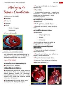 Patologia do sistema circulatório