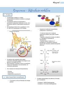 Bioquímica- Fosforilação oxidativa