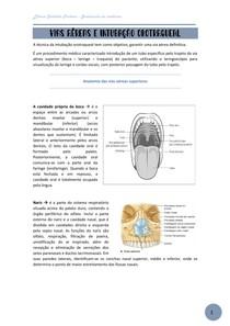 Vias aéreas e intubação orotraqueal