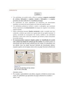 carboidratos e metabolismo