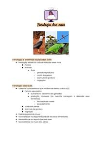 Fenologia das aves