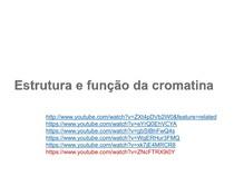Aula02 Estrutura do DNA da cromatina