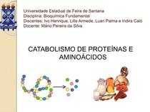 Catabolismo de proteínas e aminoácidos