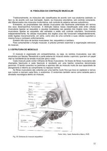 IV Fisiologia da Contração Muscular