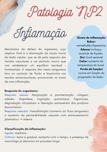 Patologia NP2 Resumo