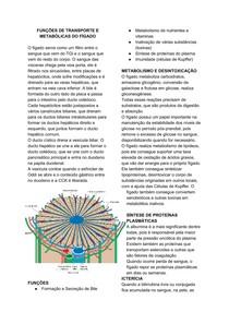 FUNÇÕES DE TRANSPORTE E METABÓLICAS DO FÍGADO