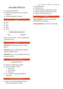 Anatomia do Assoalho Pélvico (RESUMO)
