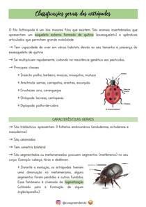 Classificações gerais dos artrópodes