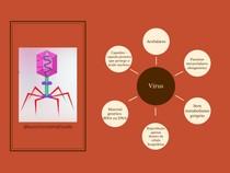 Vírus - Mapa Mental
