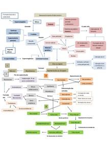 1 mapa de embrio  desenvolvimento , para a 1 prova