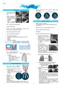 Odontometria - Endodontia